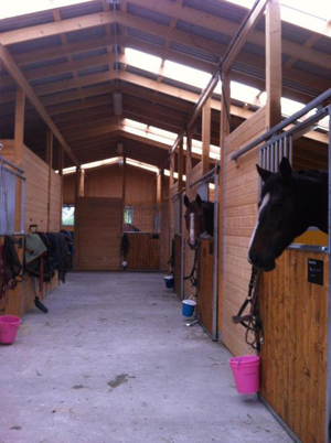 Nya stallets insida